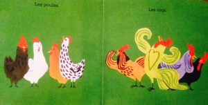 poule1